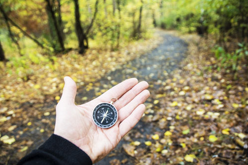 hand holding a compass on path